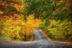 Traverse City area puts on a color show each fall. TC Visitors Bureau photo