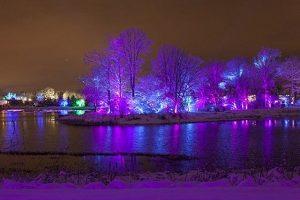 Illumination at Morton Arboretum, Lisle, IL is stunning and fun. Morton Arboretum photo