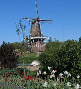 Tour an authentic windmill on Windmill Island in Holland, MI. Photos by Jodie Jacobs