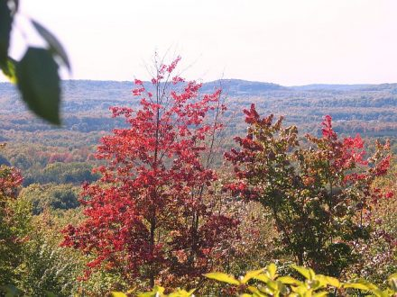 Think Traverse City for a fall getaway.