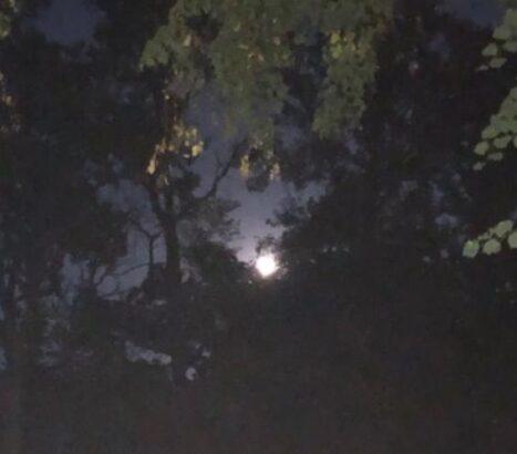 Full Moon in September is the Harvest Moon. ( J Jacobs photo)