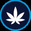 cannabis produce pathogen testing graphic