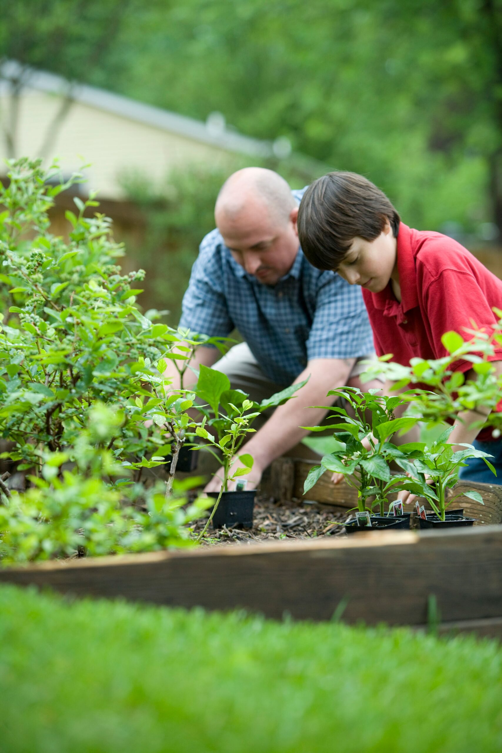 Man and young boy gardening