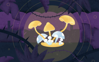 Magic Mushroom Coffee