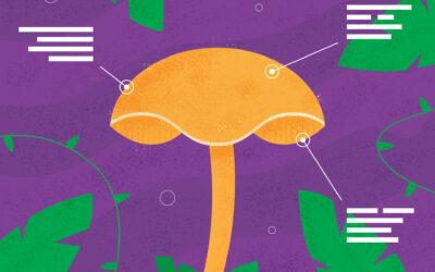 Types of Psilocybin Mushrooms