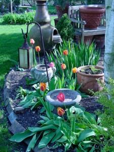 backyard2008 019