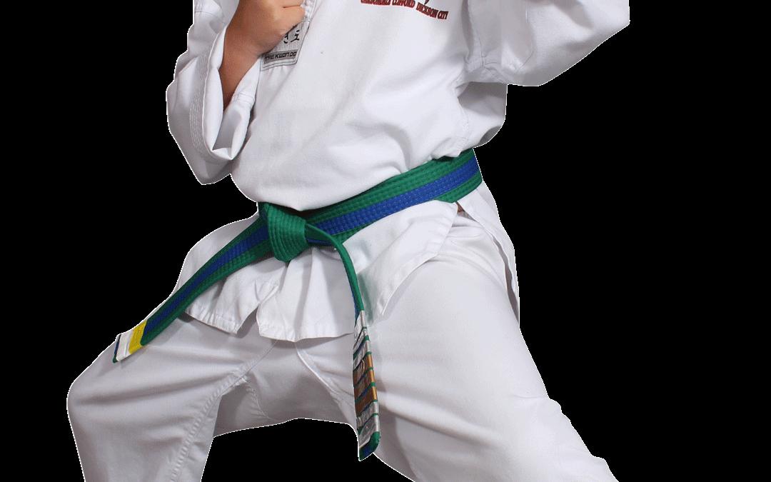 Red Dragon Karate Blog