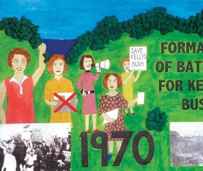 Kelly's Bush protest poster
