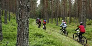 biking-temp-pic