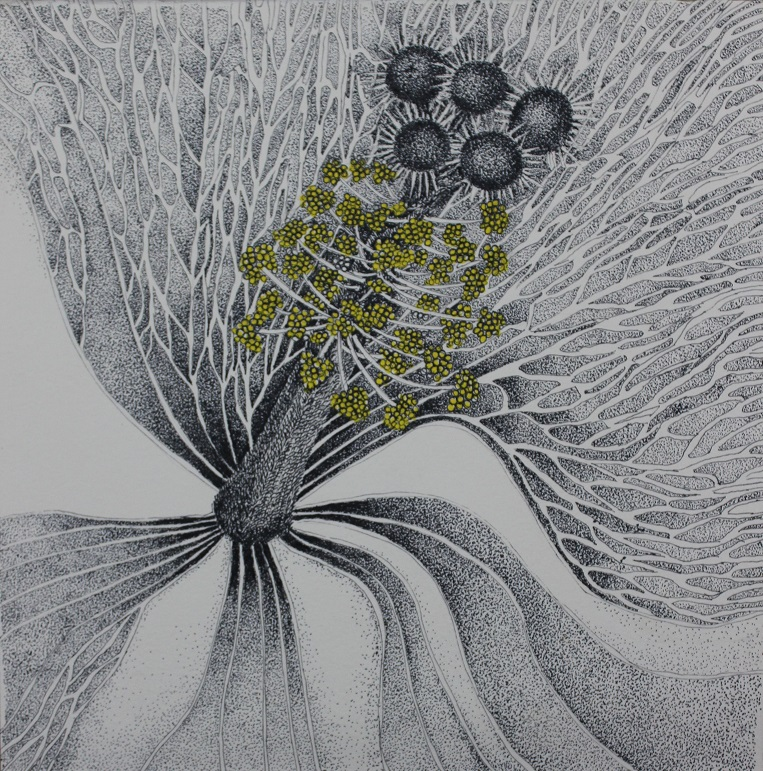 Title- My garden stories two Medium: Drawing pen on paper Size - each 9.5 x 9.5 inches Year:2019