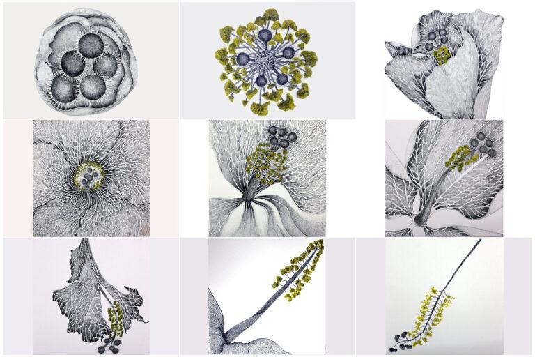 Title- My garden stories- ,size - each 9.5x9.5 inch