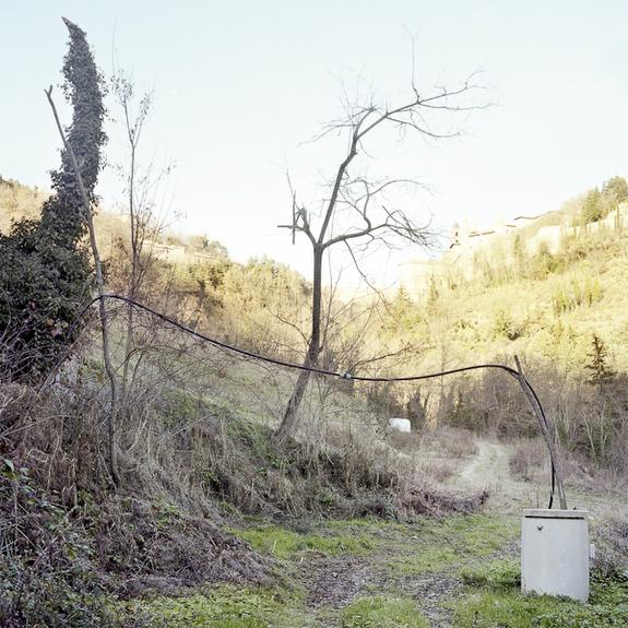 © Giacomo Streliotto3