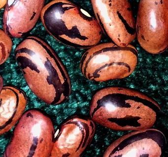 Zio Rape beans
