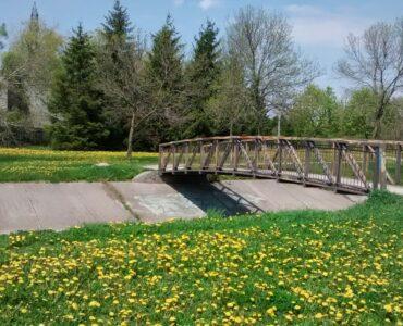 Green grass and a bridge