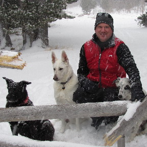 Black Lab mix, White German Shepherd, and Herding mix with advanced dog training.