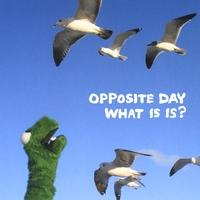 oppositeday4