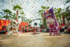 Celebrate Chinese culture at Navy Pier. Photo complements of Chinese Fine Arts Society