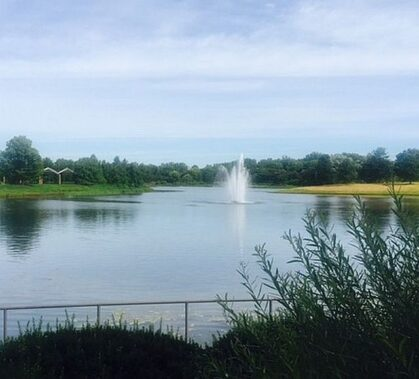The Chicago Botanic Garden is a perfect place to reflect on nature. (photos by Jodie Jacobs)