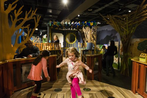 Peggy Notebaert Nature Museum for butterflies, tree houses and the Thomas D. Mangelsen photography exhibit. (Photo courtesy of the Nature Museum)