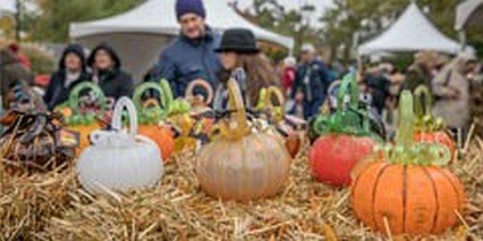 Glass pumpkins at the Morton Arboretum. (Photo courtesy of MortonArb)