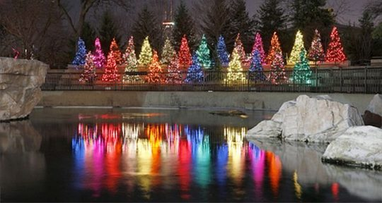ZooLights is a fun time to visit Lincoln Park Zoo. (Lincoln Park Zoo photo)
