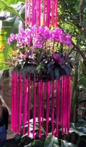 Chicago Botanic Garden Orchid Show (J Jacobs photo)