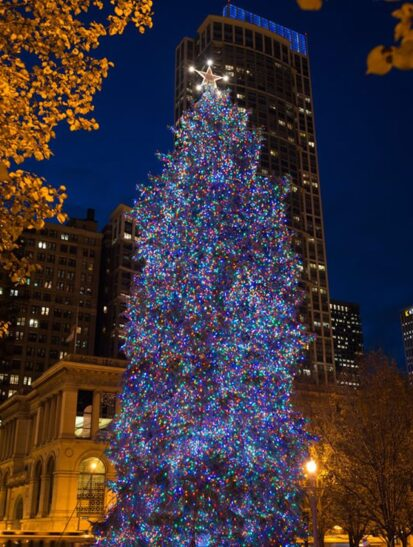 City of Chicago holiday tree (Photo courtesy of City of Chicago)