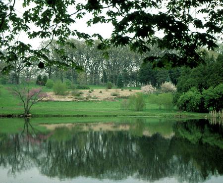 Spring will soon return to the Morton Arboretum in Lisle. (Photo courtesy of the Morton Arboretum)