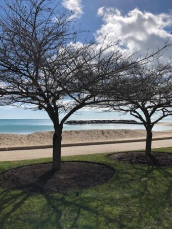 Lake Forest beach (J Jacobs photo)
