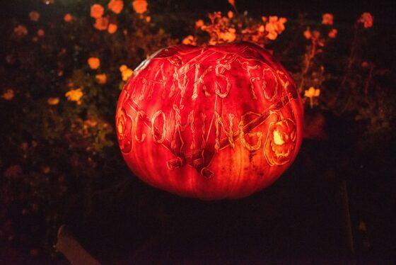 Chicago botanic Garden Night of 1,000 Jack o Lanterns. (Botanic Garden photo)