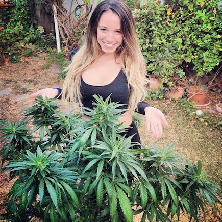 cutie with long hair in weed garden