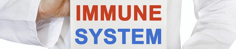 Sugar, Salt & Fat Undermine Our Immune System