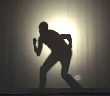 Shadows-web-hp