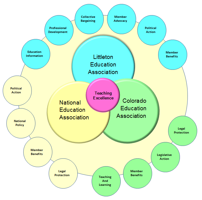 Synergy chart of LEA and CEA and NEA