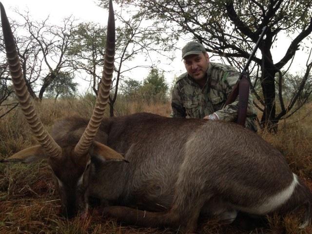 Waterbuck, 500 Jeff,  500gr BushMaster, 87 yards, broadside shot