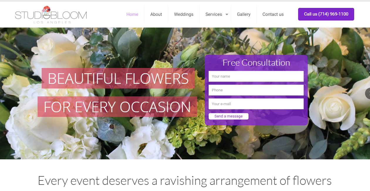 marketing studio bloom