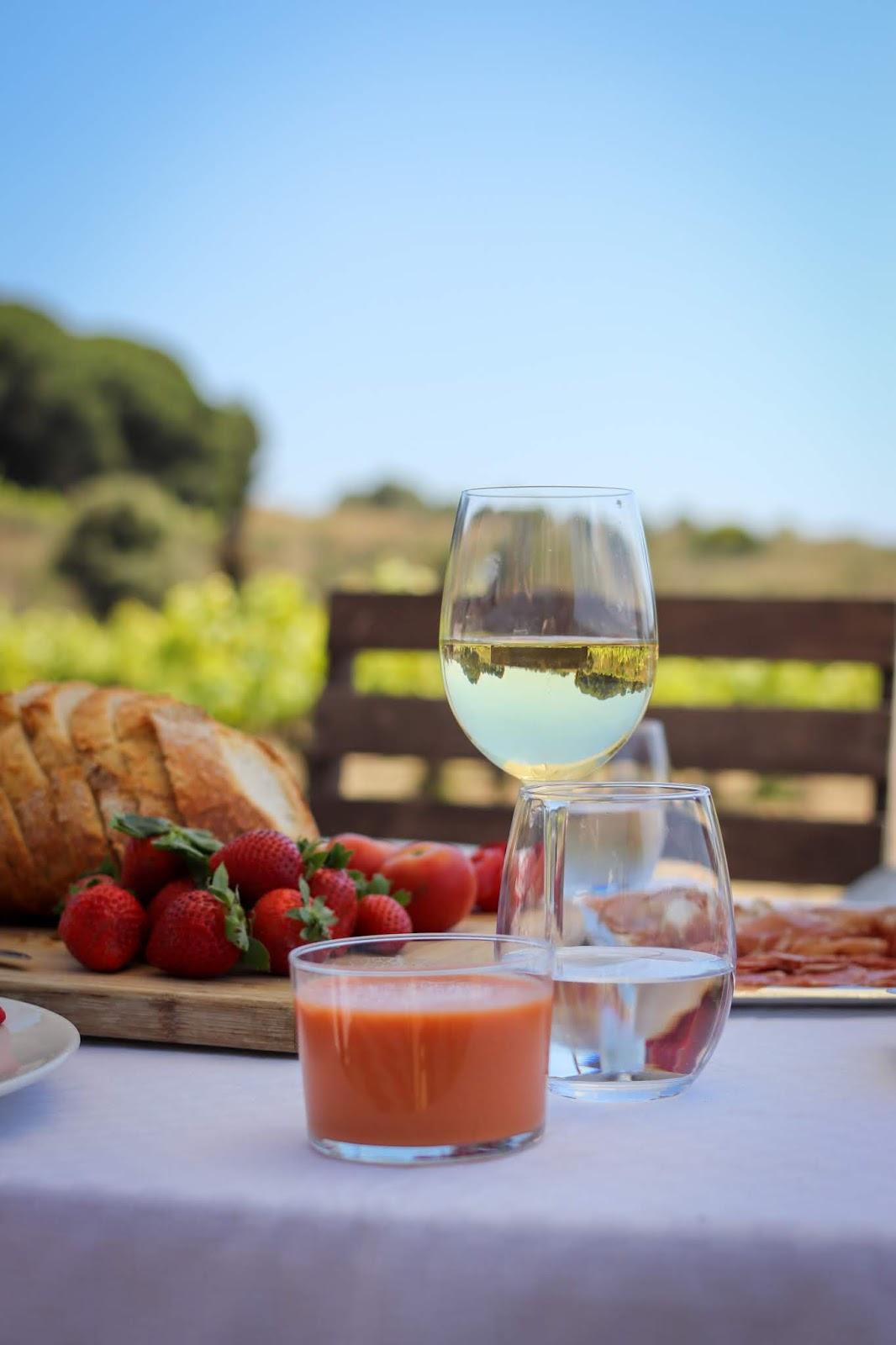 Visiting-a-vineyard-in-Spain