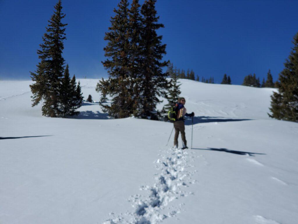 breckenridge snowshoeing, alma snowshoeing