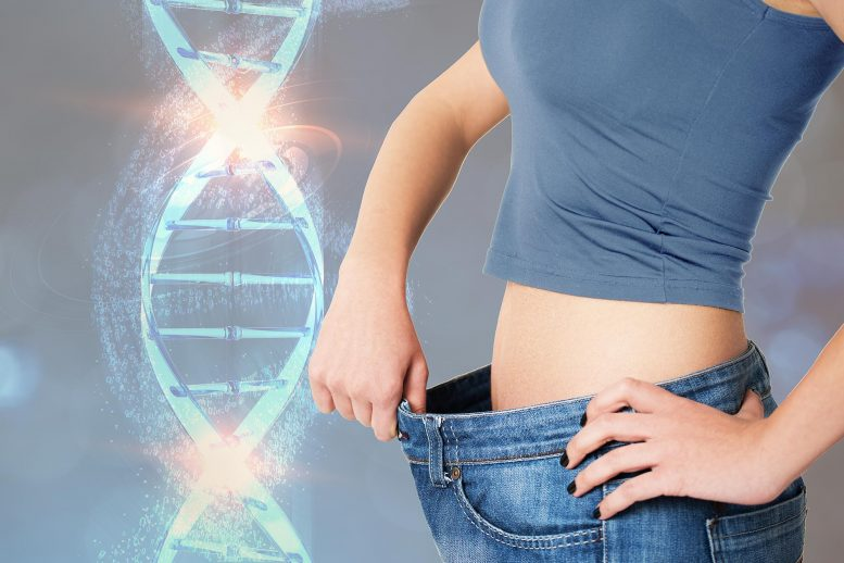 Personalized Weight Loss And Nutrition