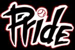 NJ Pride Softball