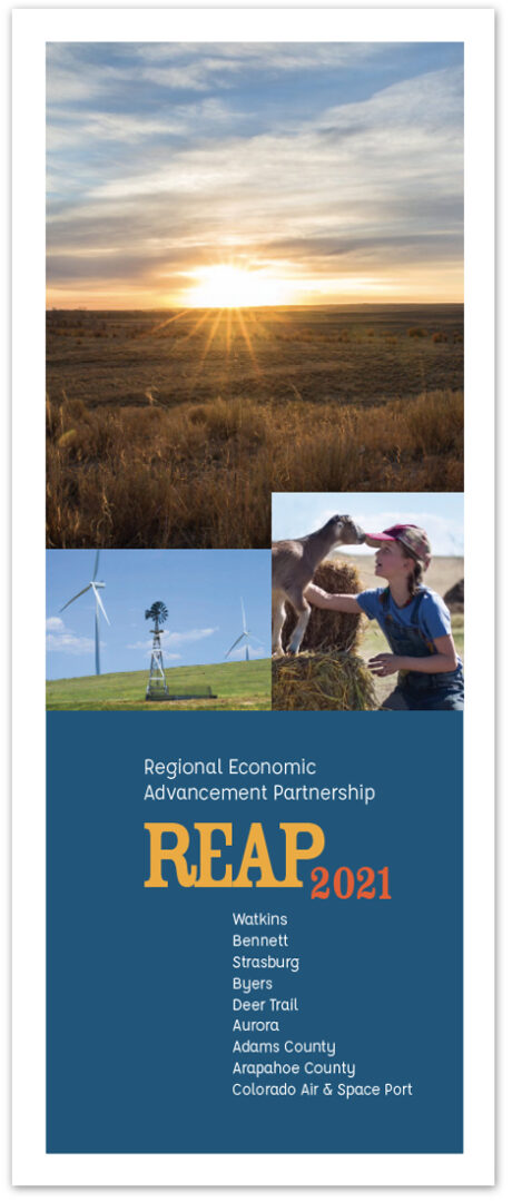 REAP_2021_Brochure_Cover_Image_ForWeb