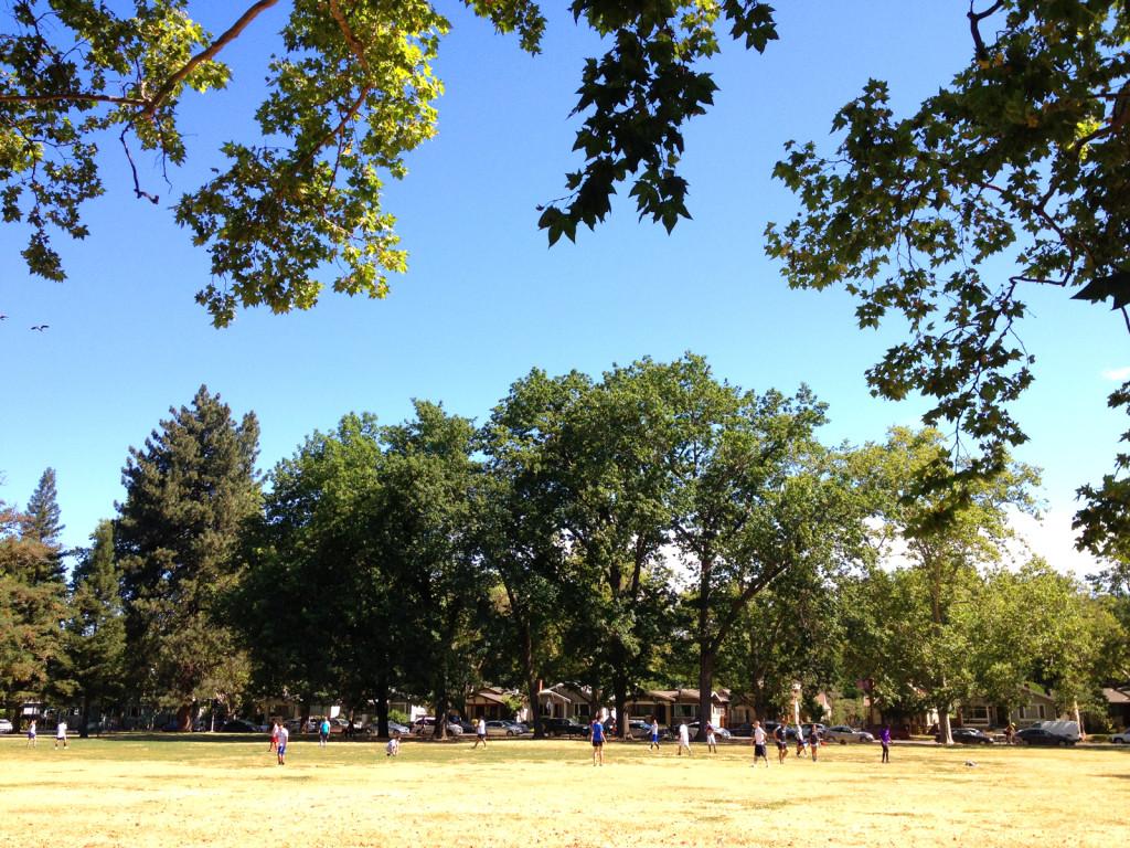 McKinley Park, East Sacramento, on July 4, 2015.