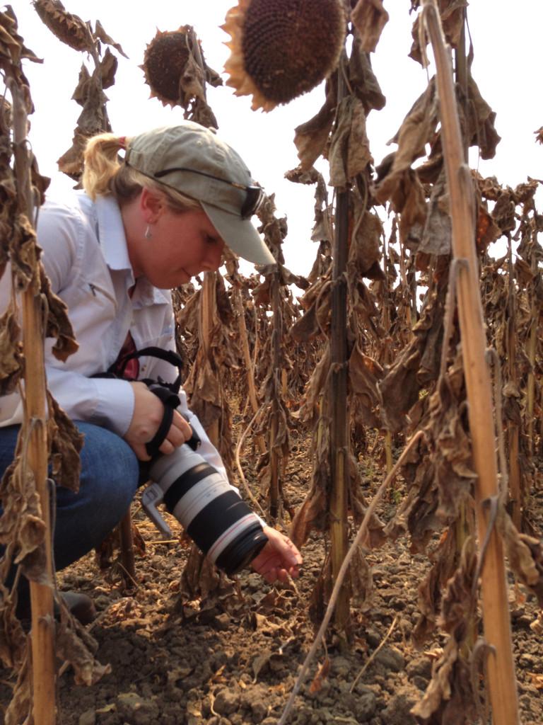 Ecologist Dr. Sara M. Kross. Photo © Ben Young Landis.