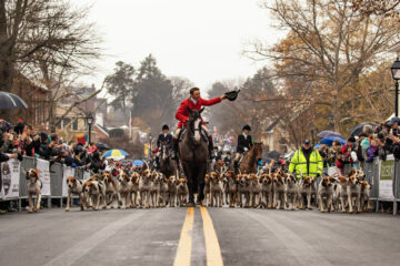 Christmas in Middleburg, Hound review