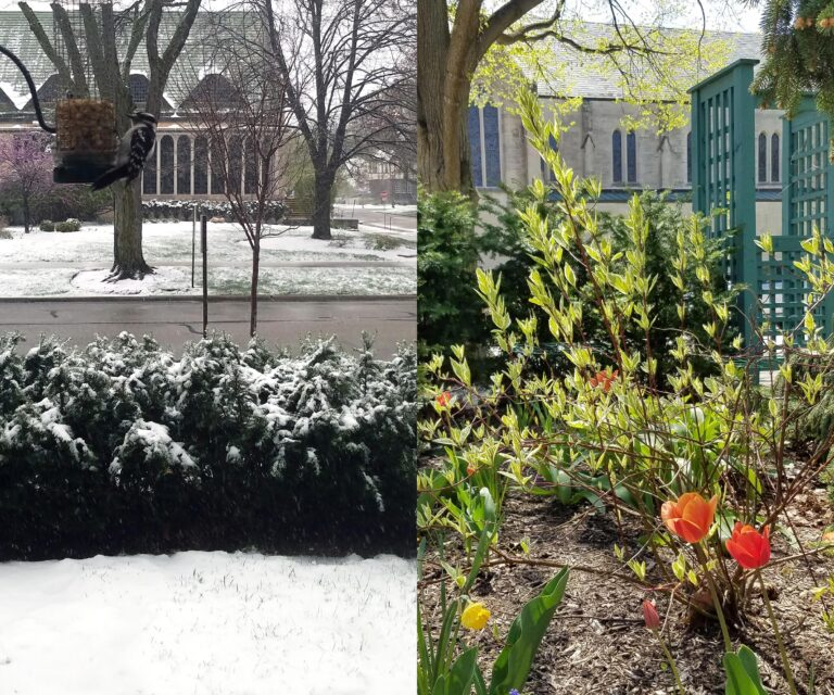 Welcome Spring – Fixing Up with Quality