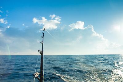Favorite Saltwater Fishing Rod