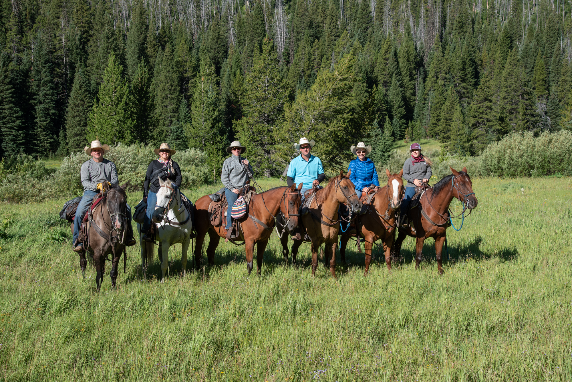 Guests in the backcountry
