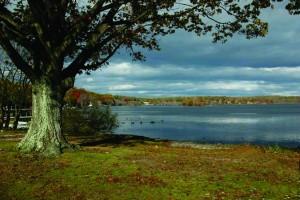 lake-musconetcong-1024x682
