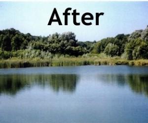 Algae Control in Ponds Bio Lake Clear