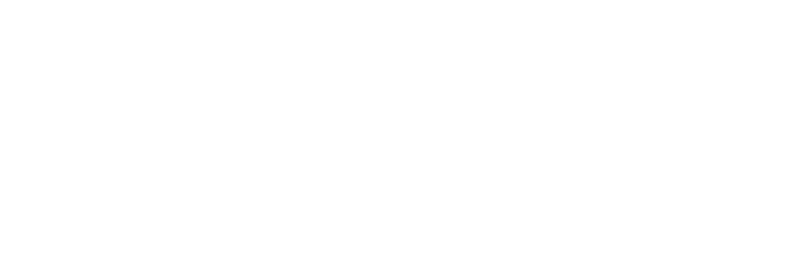 The Asthma and Allergy Foundation, St. Louis Chapter
